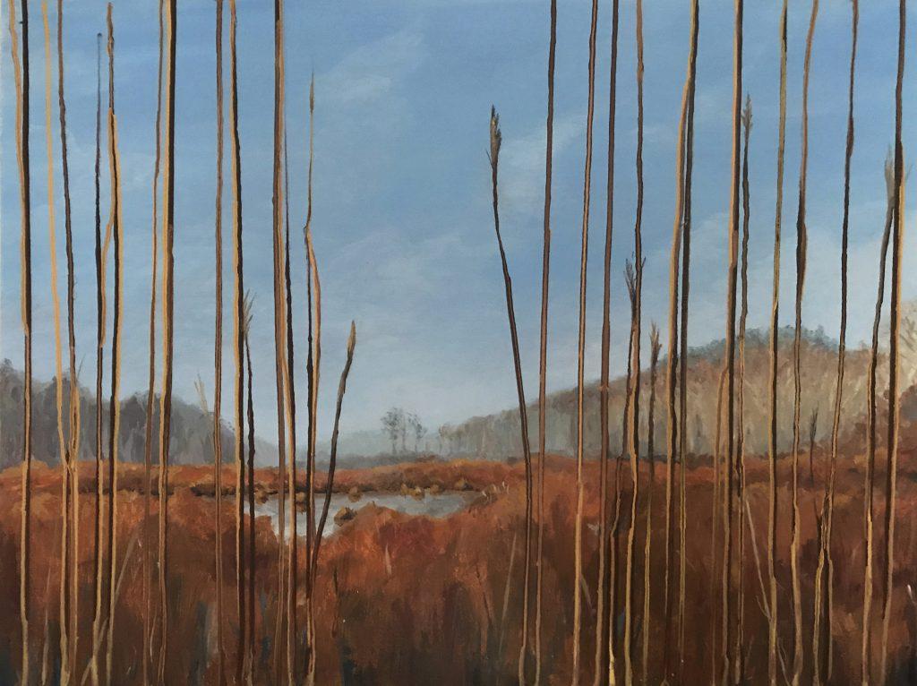 Lifting Fog Over Spring Marsh - Dana Uzwiak
