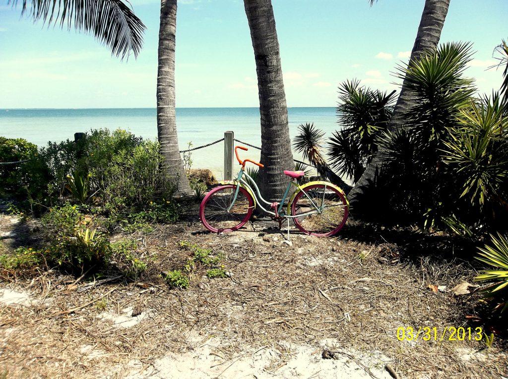 Bike Ride to The Beach - Sandy Allard